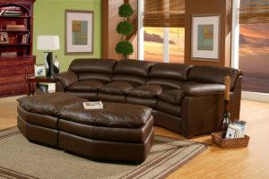 Canyon Leather Sofa Dark Room