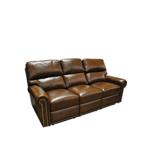 Carlton Leather Sleeper