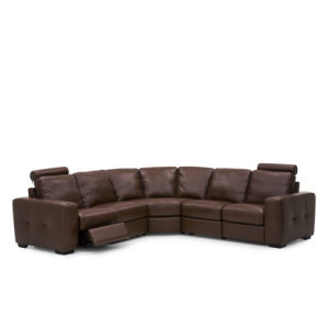 Push Leather Sectional