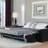 Roommate Leather Sleeper Room No People