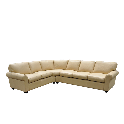 Dream Maker Leather Sectional