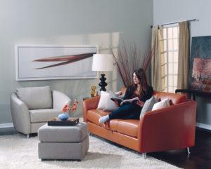 Alula Leather Sofa Room