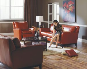 India Leather Sofa Red Room