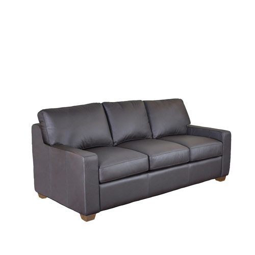 Dream Maker Leather Sleeper