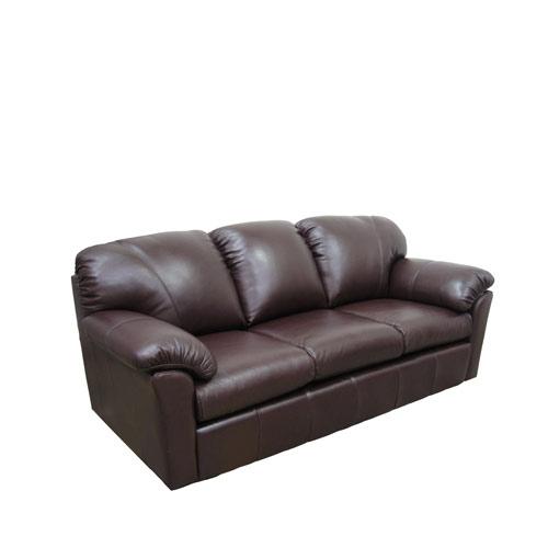 Tahoe Leather Sleeper